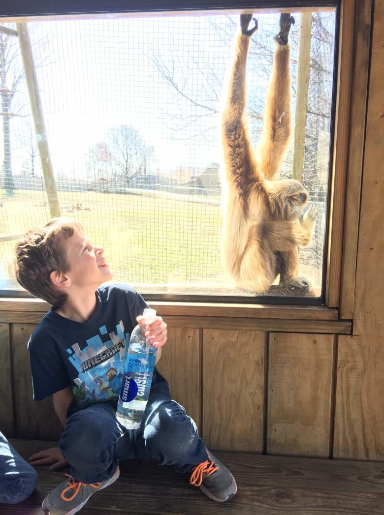 metro richmond zoo