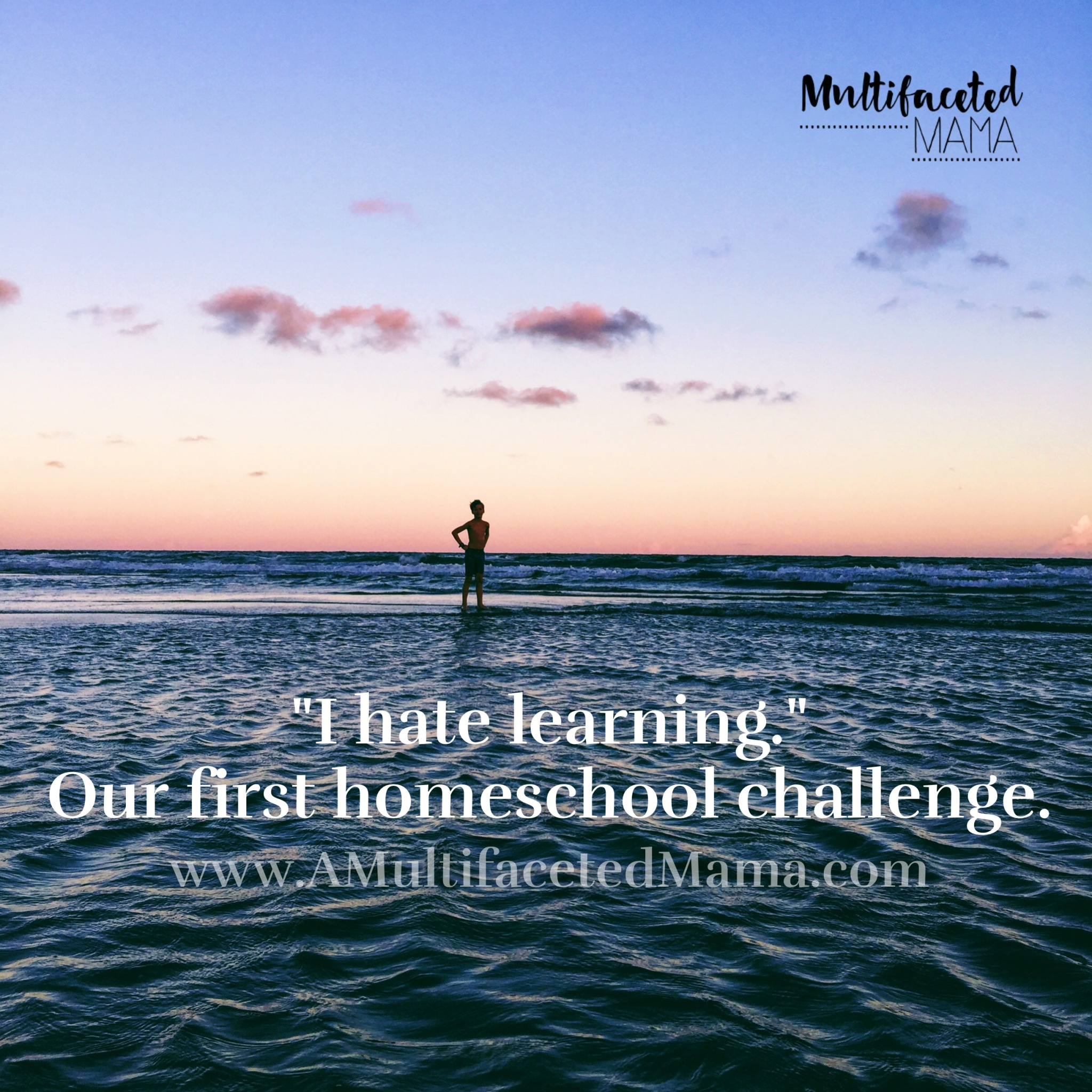 """I hate learning"" homeschool challenge"