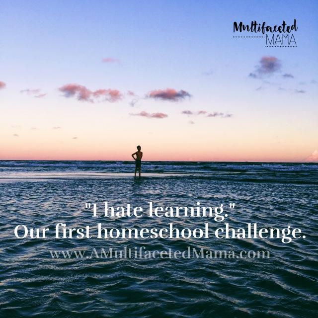 """""""I hate learning"""" homeschool challenge"""