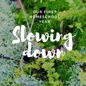 Homeschool Adventures: Slowing Down